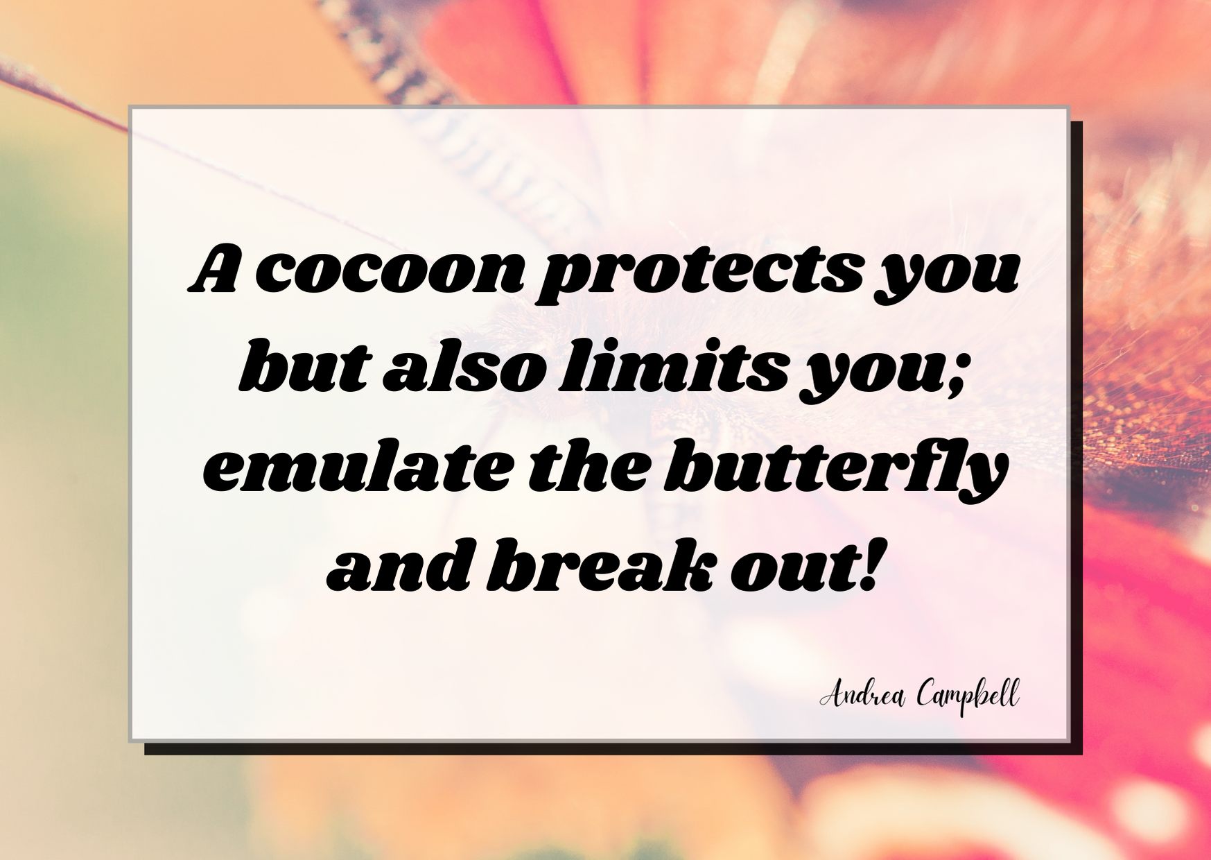 A cocoon protects